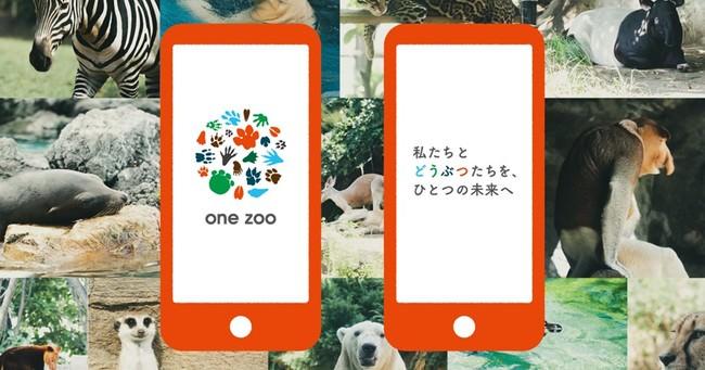 「one zoo」アプリ イメージ写真