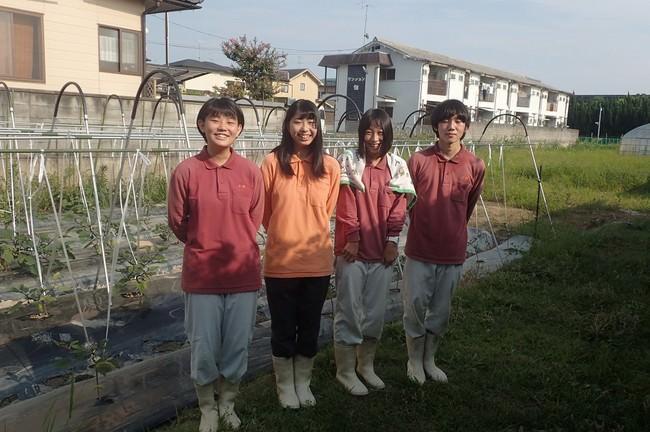 ニラックス社ブッフェ店舗と京都府立桂高校と京野菜コラボメニュー販売開始!