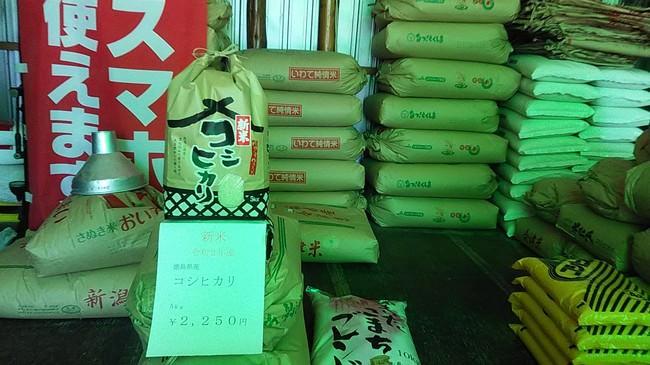 令和2年産の新米発売-徳島県産コシヒカリ、新潟県魚沼コシヒカリ・こしいぶきなど
