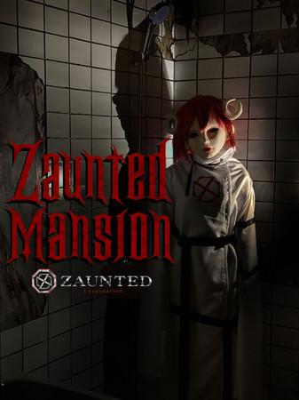 ZAUNTED MANSION