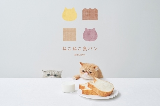 【1/25】ねこ型ベーカリー&スイーツ『東京ねこねこ』が東京駅構内にオープン