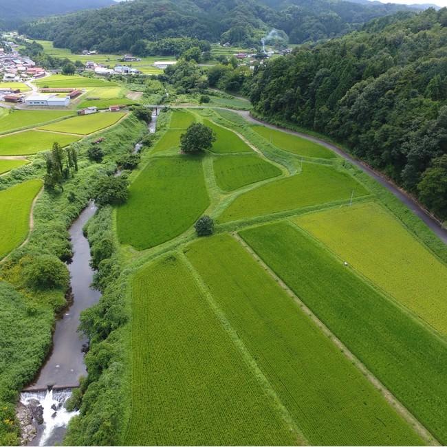 豊かな自然がもたらす恵みは、米作りにかかせません
