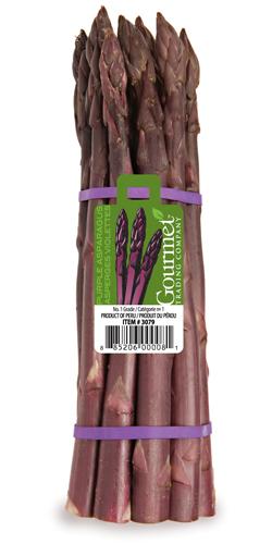 Purple-Asparagus-Bunch