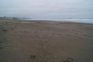 Une très longue plage si tranquille, sauf quand on essaye d'y surfer ! Au loin, les pélicans. Puerto Rico, Equateur