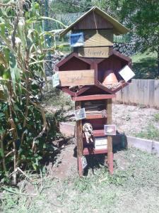 atelier environnement jardin hôtel à insectes La Réunion