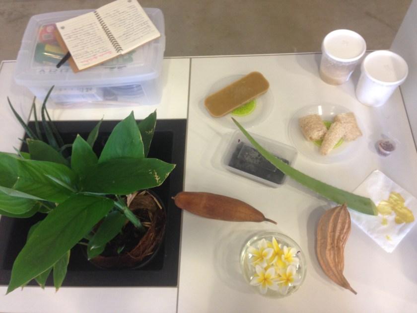 cosmétique plantes La Réunion