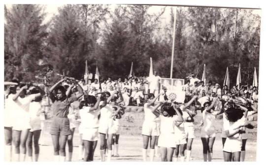 campus (194)