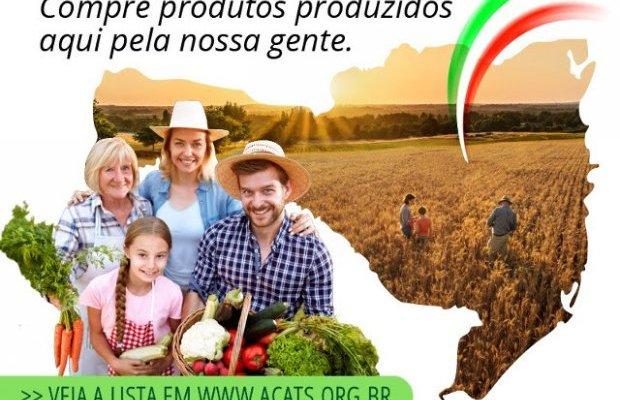 Epagri e supermercados lançam campanha para estimular consumo de produtos da agricultura familiar catarinense