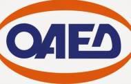 ΟΑΕΔ | Έναρξη Προγράμματος Προεργασίας και Ειδικού Προγράμματος Απασχόλησης στην Περιφέρεια Δυτικής Μακεδονίας