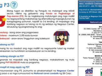 P3 Lending Program of DTI