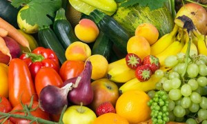 Horticulture Disease Consultation and Management Project in Maharashtra