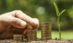 Seed Capital Loan Scheme in Maharashtra