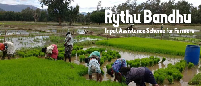 Rythu Bandhu - Input Assistance Scheme for Farmers in Telangana