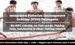 Integrated Fisheries Development Scheme (IFDS) Telangana