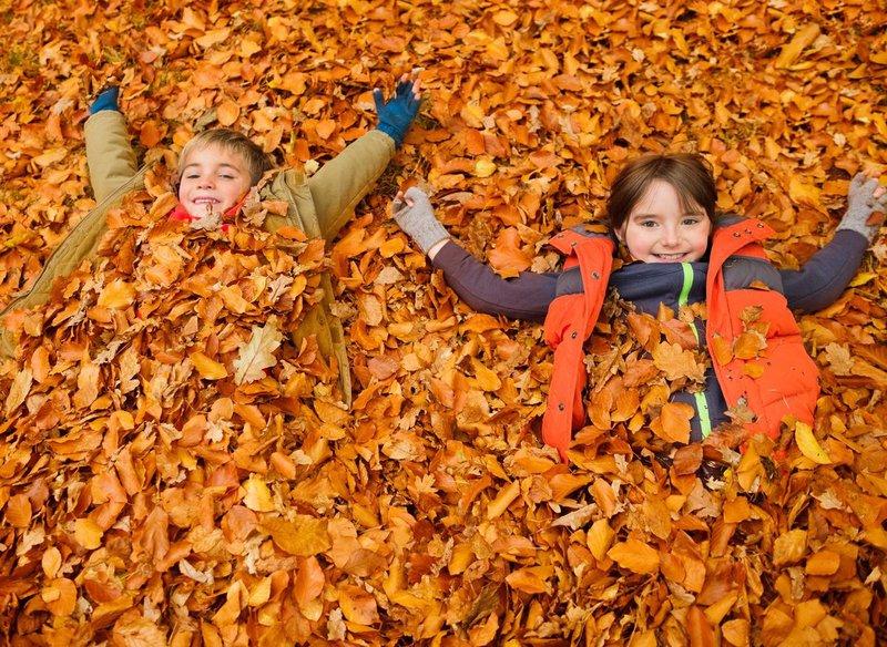 Jesen je tisti letni čas, ki s seboj prinaša priložnosti za sprostitev