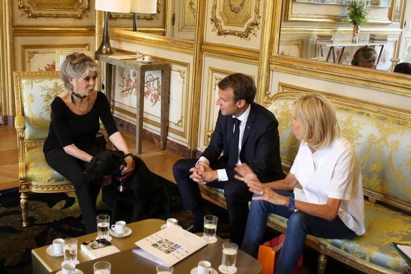 Ko me na ulici prepoznajo, nisem vesela, prav naježim se, pravi 85-letna igralka Brigitte Bardot