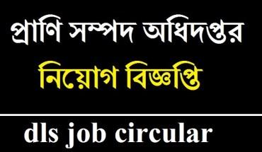 dls job circular