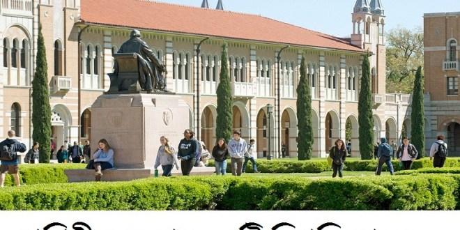 top university of the world