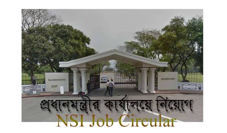 NSI Job Circular