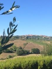 Looking at Siena from Aia Mattonata Relais