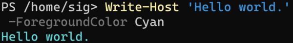 PowerShell「Write-Host + 文字列」