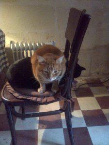 Sitting on Max
