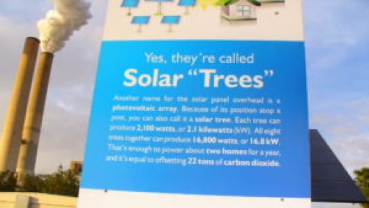 solar tree sign at teco, fl