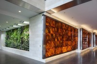 Backlit Wood Veneer Panels
