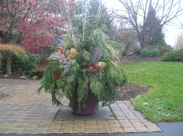 winter planters and gardens gpl