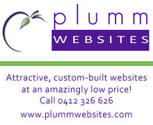 Plumm Websites link