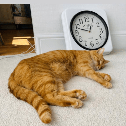 Procrastination and motivation