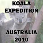 Koala Expedition Australia Logo