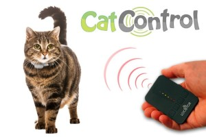 Cat Control-2