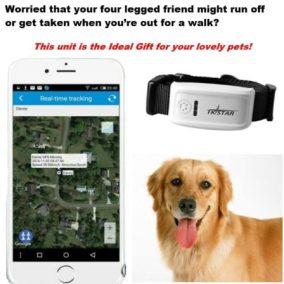Tkstar Mini-GPS Tracker (4)