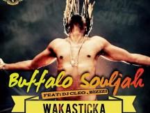 Buffalo Souljah feat. DJ Cleo & Bizizi - Wakasticka