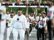 Dladla Mshunqisi feat. Dj Tira & Distruction Boyz - Pakisha (Insane Malwela 2k18 Remix)