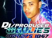 DJ Wallies - Woza Bang (S.O To Woza DK) Gqom Mix