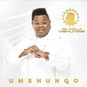 Dladla Mshunqisi feat. Professor - Amalukuluku