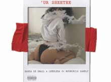 Kabza De Small & Leehleza ft. Moonchild Sanelly - Ur Sheetee