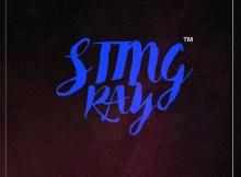 StingRay - Accelerator