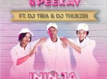 Love Devotion & Peekay Ft. DJ Tira & DJ Thukzin - Ininja (Dlala Thukzin Remix)
