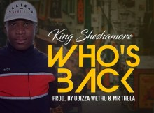 SheshaMore - Guess Who's Back (Prod. By uBizza Wethu & Mr Thela)