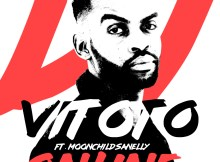 Dj Vitoto ft. Moonchild Sanelly - Online
