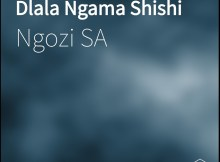 Ngozi SA - Dlala Ngama Shishi