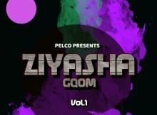 Dj Pelco - Ziyasha Gqom Vol.1