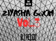 DJ PELCO - Ziyasha Gqom Mix Vol.3