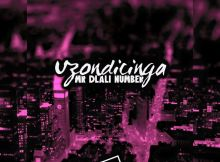 Mr Dlali Number - Uzondicinga