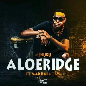 Mshudu - Aloeridge ft. Makhalafilm