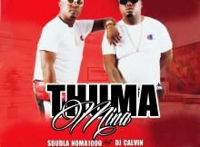 Sdudla Noma1000 - Thuma Mina (feat. DJ Calvin)