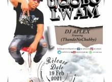 DJ APLEX SA - Uqobo Lam (feat. ThandoNoChubby)